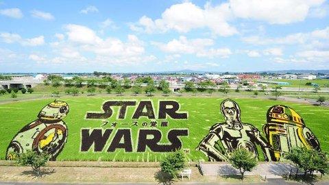 巨大スター・ウォーズが青森に!田舎館村「田んぼアート」で観る名作映画