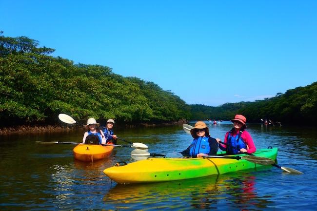 西表島 幻 海 ウミガメ 観光 ジャングル 天然記念物 カヤック 魅力