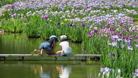 夏の思い出はここで作れる。静岡・加茂荘花鳥園の体感イベント