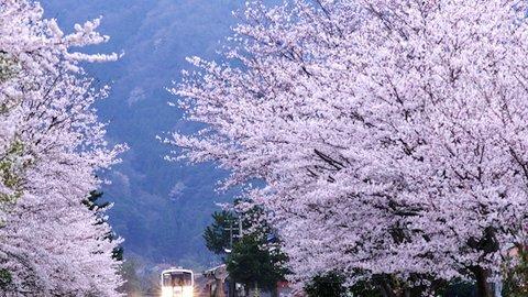 さよなら、JR三江線。日本の美しいローカル路線がまたひとつ廃線へ