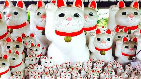 猫好きが集まるお寺。豪徳寺はなぜ「招き猫」発祥の地と言われるのか?