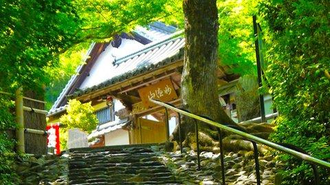 恋愛の願い事が80%叶う? 京都で300年の歴史ある鈴虫寺のヒミツ