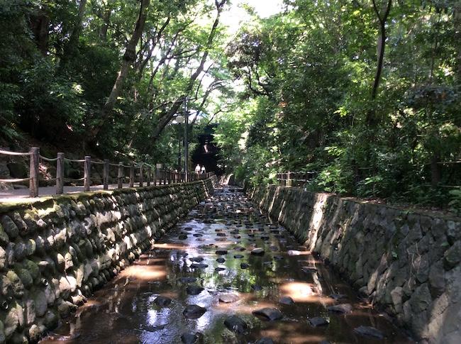 谷尻川の水はやがて多摩川へと流れゆく