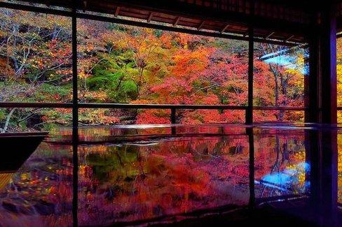 鏡張りのような美しい紅葉も。京都を美しく撮れる紅葉エリア10選
