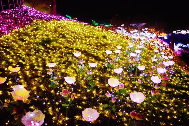 カワイイ花のイルミネーションがいっぱい