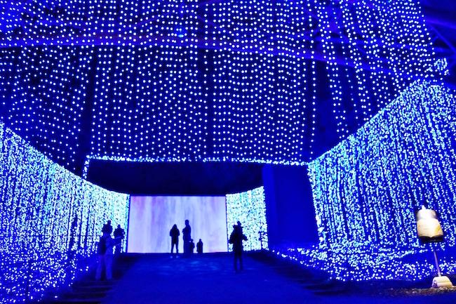 毎年人気のスポット「光のナイアガラ」