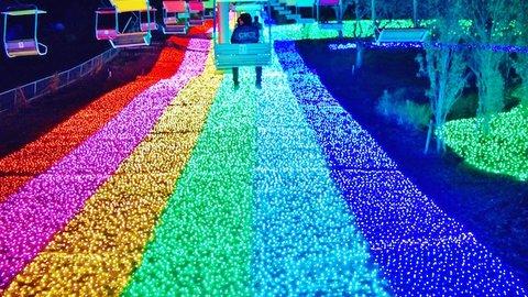 関東最大、600万球のLEDが織りなす光の祭典「さがみ湖イルミリオン」