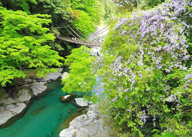 徳島県三好市22
