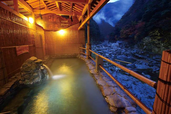 徳島県三好市13祖谷温泉 (1)