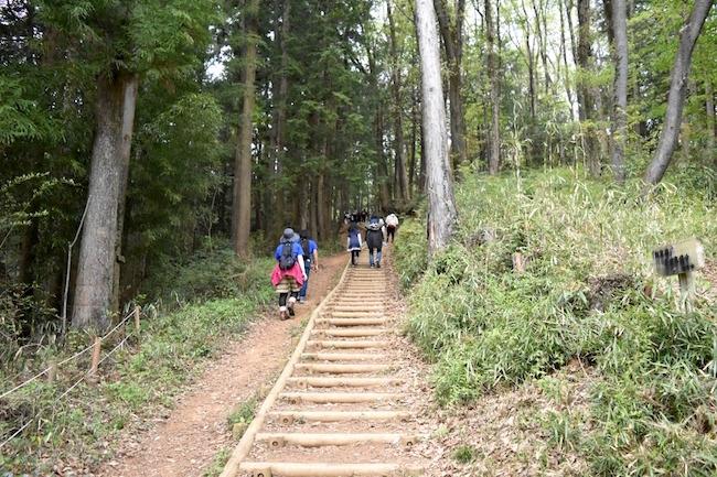 歩きやすく整備されているので登山前の準備運動の場所にピッタリ