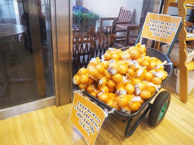 「たまねぎキャッチャー」で玉ねぎをつかみ取るとおよそ1.2キロ(500円分相当)の玉ねぎがもらえる