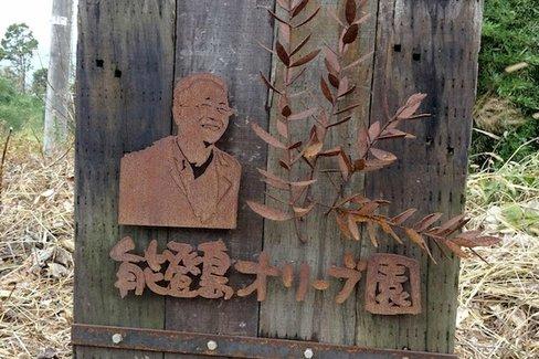 オリーブ栽培で町おこし?神奈川県二宮町と石川県七尾市