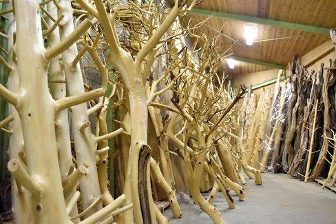 日本人が500年受け継いできた「吉野杉と吉野桧」という伝統