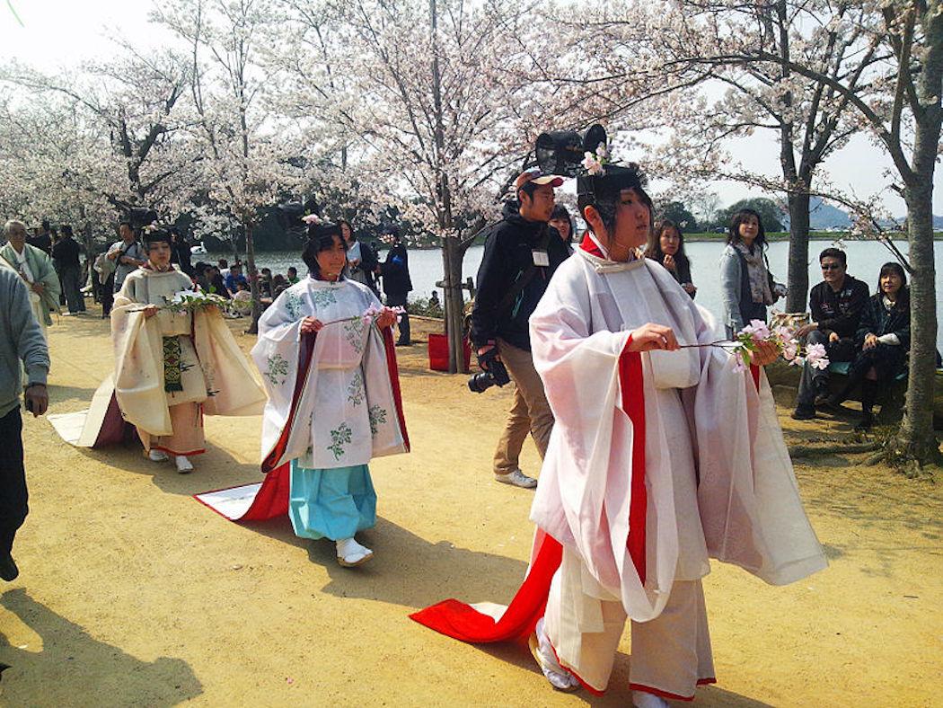 Hana_shizume_no_matsuri_in_the_row_of_cherry_blossom_trees_(2012)