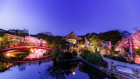 願い事が叶う開運スポット。源義経が静御前を見初めた京都・神泉苑