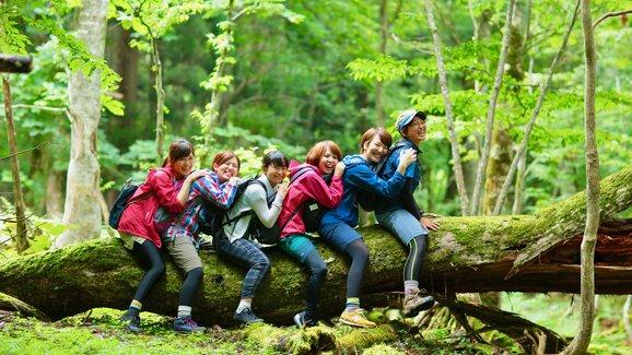 海外でも反響、日本発祥の「森林浴」を楽しむ外国人観光客が増えるワケ