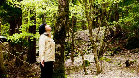 GWに五感を研ぎ澄ます。海外でも話題「森林セラピー」を体験してきた
