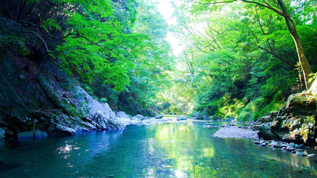 30秒ですぐ絶景。埼玉の秘境「三波渓谷」で出会った神秘的な景色