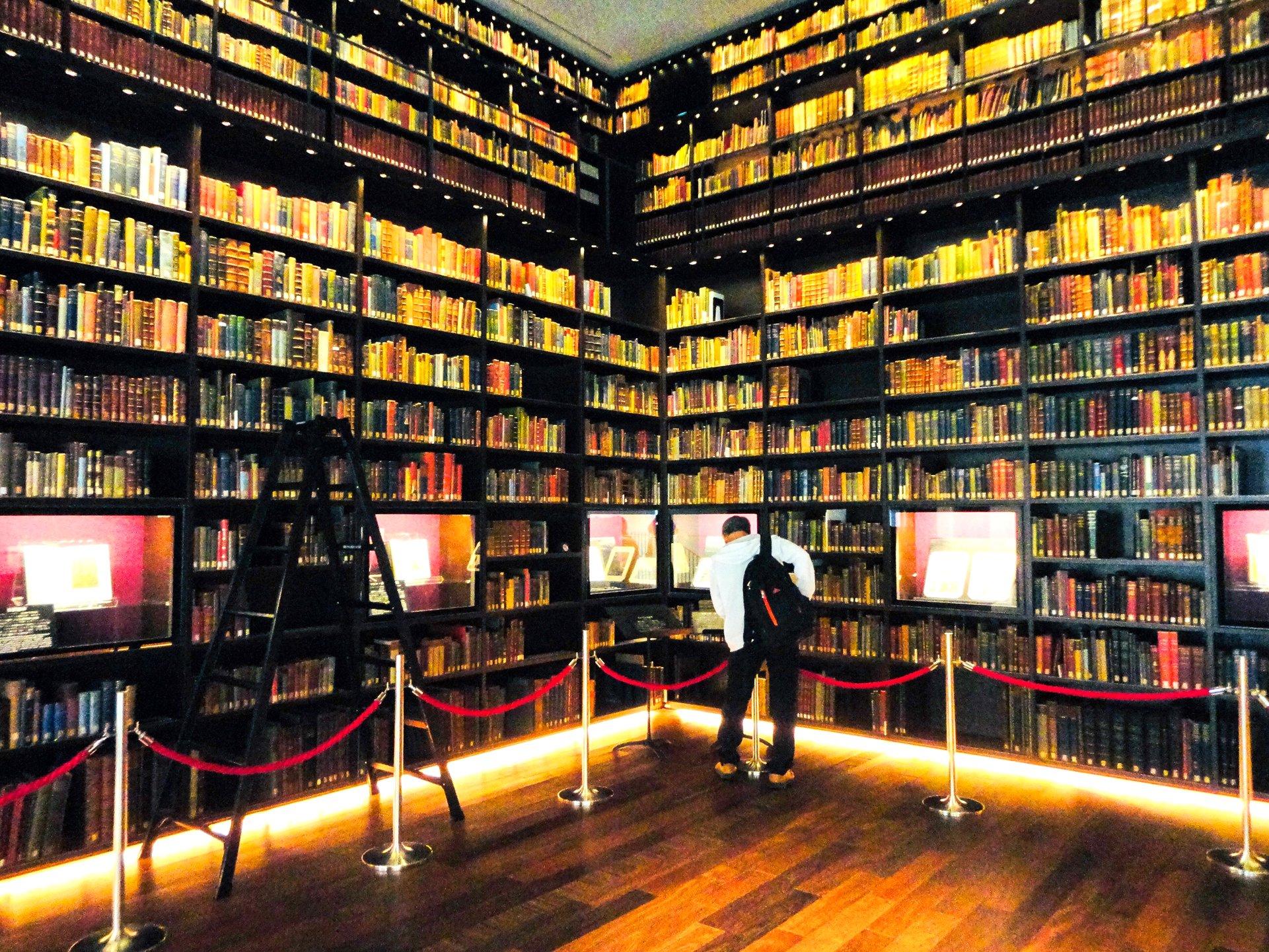 図書館 文京 区