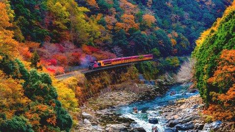 秋の絶景を車窓から。紅葉に出会えるローカル列車の旅