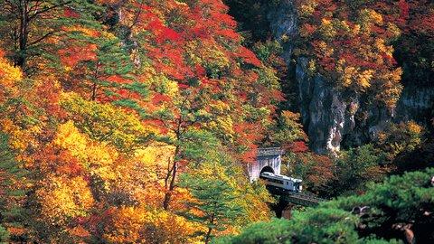 一生に一度は見たい秋の絶景。日本全国の美しい「紅葉スポット」20選【2020】