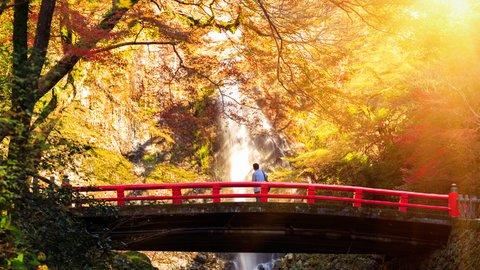 心奪われる秋の絶景。日本の美しい紅葉スポット10選