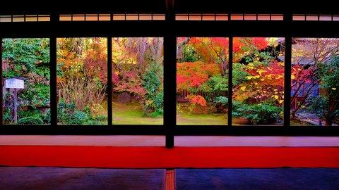 京都の秋はこれから。着物で巡る、美しい四季と歴史に触れる旅