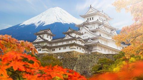 東京3位、大阪7位。47都道府県の「魅力度」ランキング発表