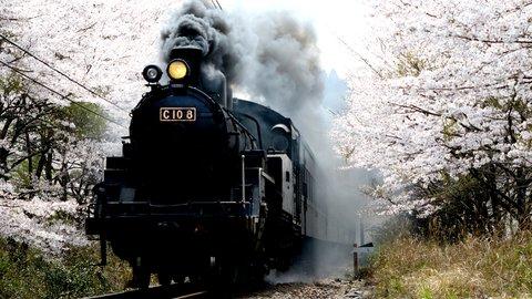 レトロなSLが絶景を駆け抜ける、静岡「大井川鐵道」