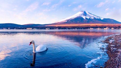 世界中の旅行者が認めた、日本の「スゴイ」旅館&ホテル6選