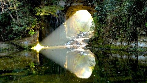 6月のユウウツをふっとばせ。癒しの絶景「緑の世界」を探す旅