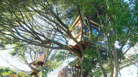 ツリーハウス、ハンモックに暖炉。千葉にある絵本の世界「椿森コムナ」