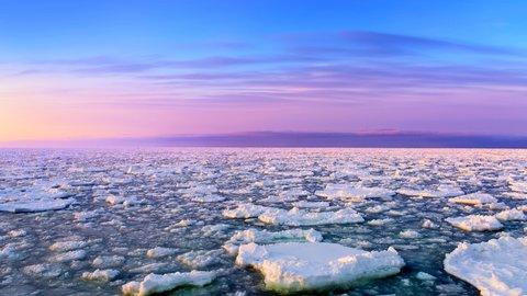 自然が作る、ここだけの奇跡。北海道「流氷」を海陸で絶景体験