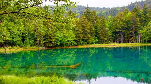 北海道旅行で行きたい、絶景広がる「湖沼」10選【2019】