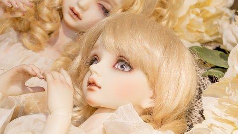 ただの人形じゃない!?京都のホビー会社から生まれたスーパードルフィーの魅力に迫る