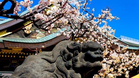 早春の絶景を。日本全国「梅の名所」ランキングTOP10