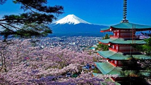 日本の春は美しい。山梨&静岡の「富士山と桜コラボ」5選