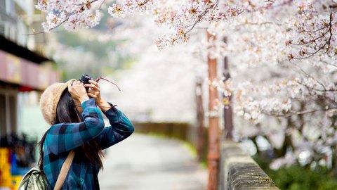 言語よりも日本文化に熱視線。アジア5カ国の「留学」事情調査