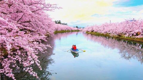風情感じる喜びを。日本を代表する「絶景の桜」ランキングTOP10