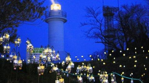 甘い香りと光に包まれて。ムード高まる「水仙岬のかがやき2019」3/24開催