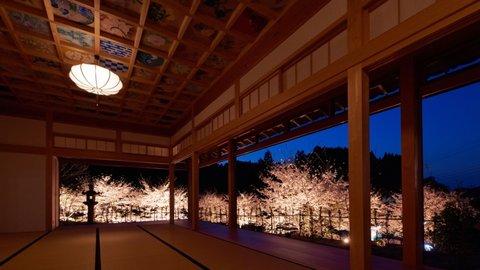 幽玄な夜の灯りに照らされて…京都府 穴場の桜ライトアップ9選