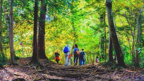 東京近郊で大自然。日帰り「登山」が楽しめるスポット6選