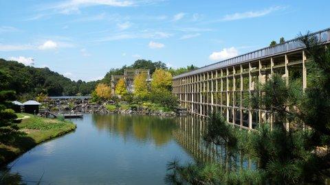 新緑まばゆい季節に五感で楽しむ森林浴!京都の「けいはんな記念公園」へ行こう