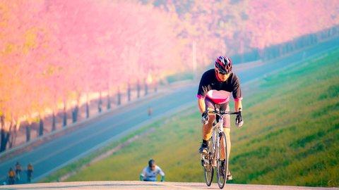 ツーリング予算は平均3.1万円。日本全国「サイクリスト国勢調査2018」