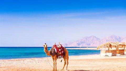 ナイル川の両岸に秘められた意味。ミステリアスなエジプト旅行記