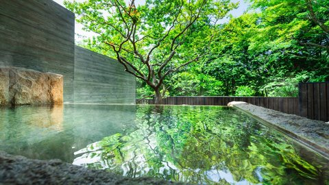 泉質、レモン果汁レベル。アート×温泉で五感を解放する箱根旅