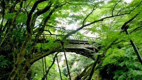 松尾芭蕉も愛した加賀の名湯。渓谷美に心奪われる「山中温泉」