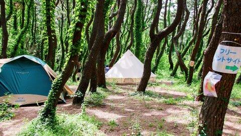 ビーチ目の前。初心者も安心の湘南「柳島キャンプ」で夏を満喫