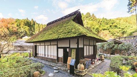 宇治茶の郷・宇治田原町で日帰りドライブ。話題の正寿院とお茶を巡る旅