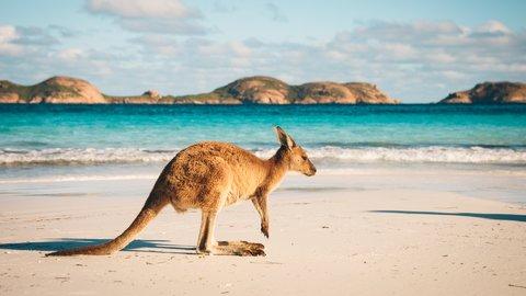 観光地や物価まで。知っておきたい基本の「オーストラリア」旅行情報